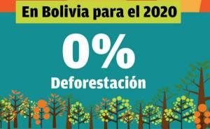 Deforestacion bo