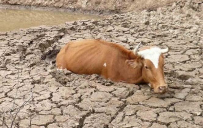 sequias e inundaciones