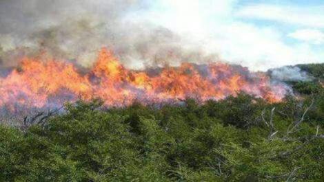 incendio en beni 2.jpg