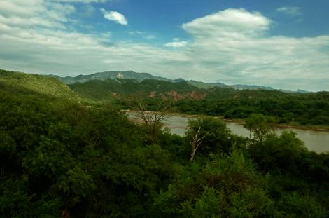 Paisaje-del-Gran-Chaco-Boliviano.png